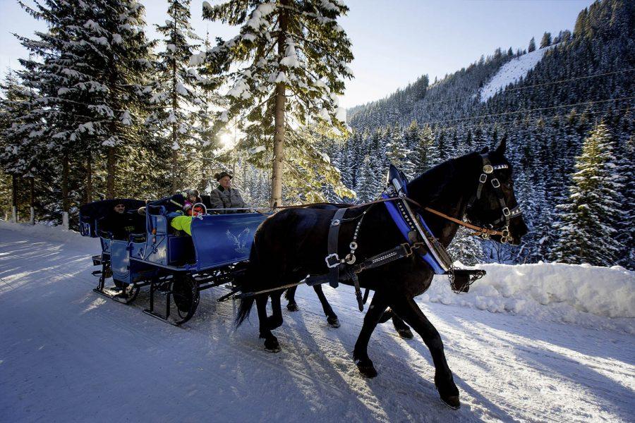 Pferdeschlittenfahrt Flachau - Appartements Haus Winter