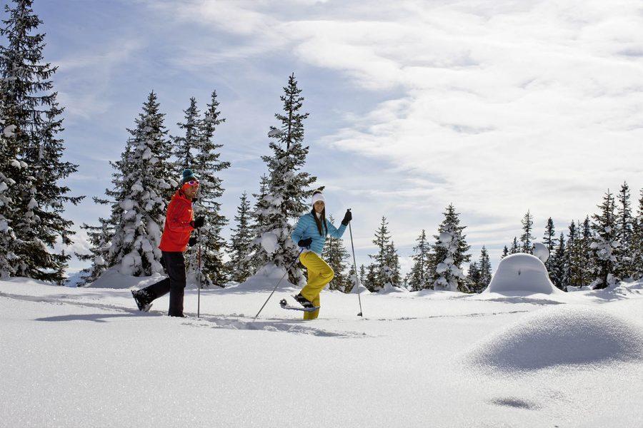 Schneeschuhwandern Flachau - Appartements Haus Winter